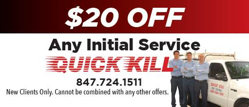 $20 Off Initial Service