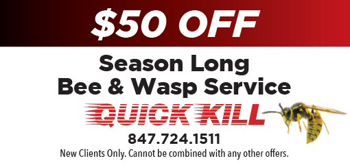 $50 Off Bee & Wasp Service